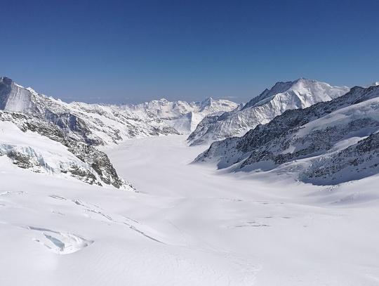 アウレッチ氷河